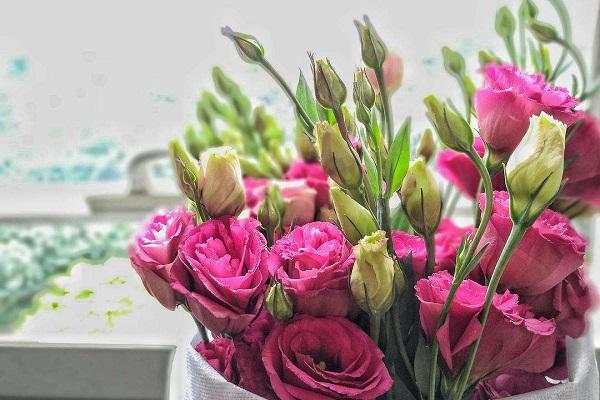 网上买回来的花怎么养