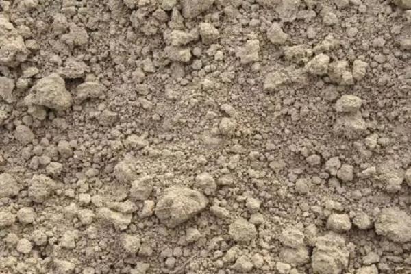 板结的土壤怎么变松 减少土壤板结的方法