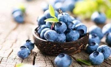 蓝莓用碱性土种植会怎样 如何改良土壤PH值